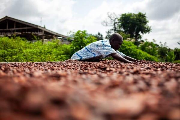 Fairafric Schokolade - 70% Bio Zartbitter - Ghana